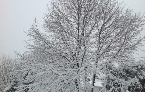 Spring Break Gets an Early Start: Snow Cancels Last Day Before Vacation