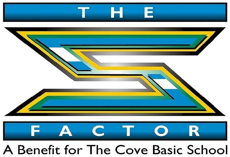 �the s factor� high school service learning project