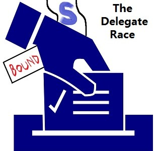 Election Year 101: The Delegate Race