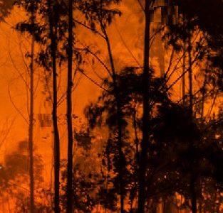 CA Fires Engulf Communities
